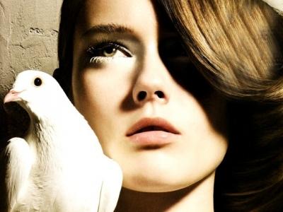 10 Top Cruelty-Free Cosmetics Companies ...