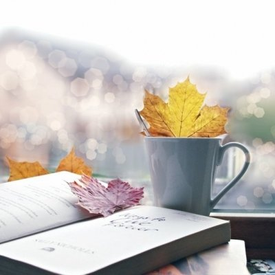7 Lovely Books to Curl up with This Fall ...