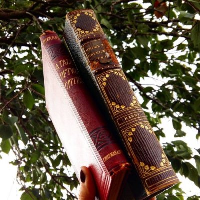 7 Fitting Books to Read beneath a Tree This Fall ...