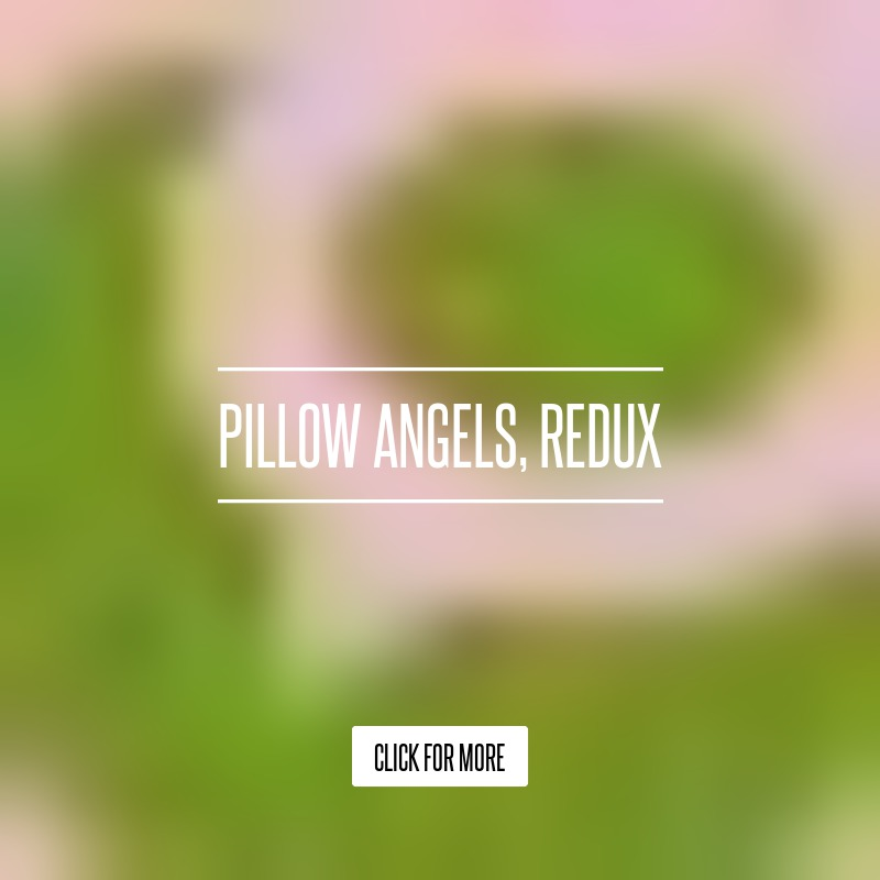 pillow angel ashley A girl known to the world only as ashley, her parents' beloved pillow angel, recently set aflame a large-scale, ethical debate - but she'll never know she did the parents of the mentally.