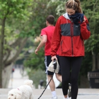 3 Photos of Elle and Bella Go for a Walk ...