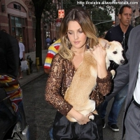 7 Photos of Drew Treats Her Puppy ...