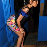5 Photos of Winehouse Strikes a Pose ...
