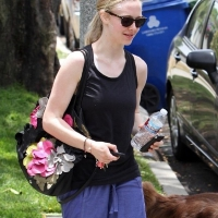 4 Photos of Seyfried Works It out ...