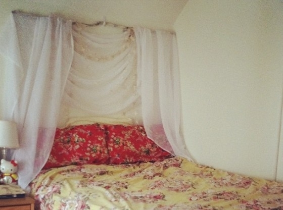 Branch - 13 Gorgeous DIY Canopy Beds ... → ? DIY