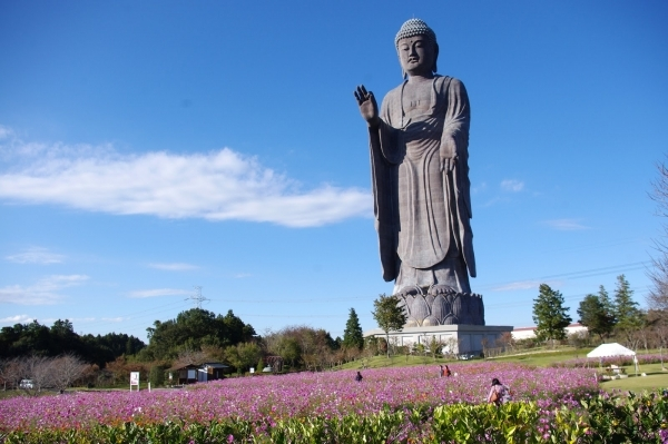 Ushiku Daibutsu, Ushiku, Japan - 9 of the Worlds Coolest…