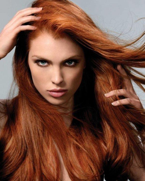 Cinnamon Hair ...