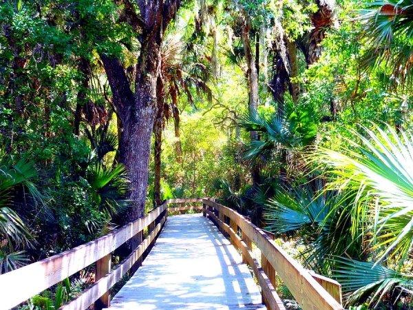 Take Nature Walks