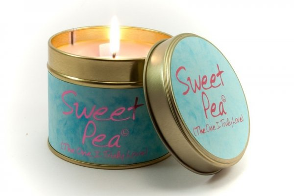 Lily Flame - Sweet Pea
