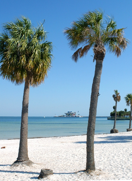 Women+of+St.+Pete+FL Saint Pete Beach, St. Petersburg, Fl - Want to ...