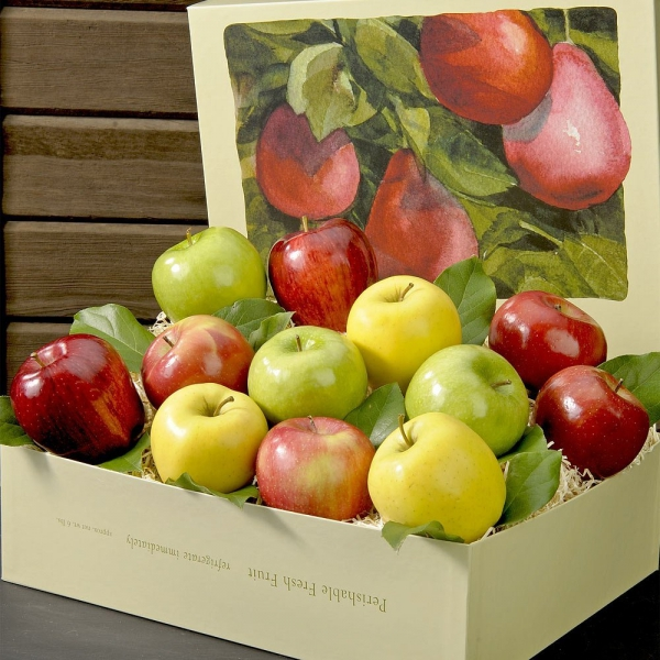 food, produce, fruit, plant, painting,