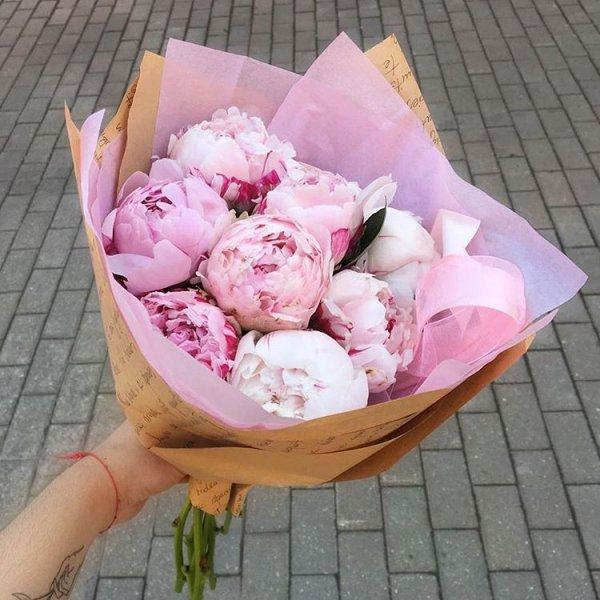 flower, pink, flower bouquet, plant, peony,