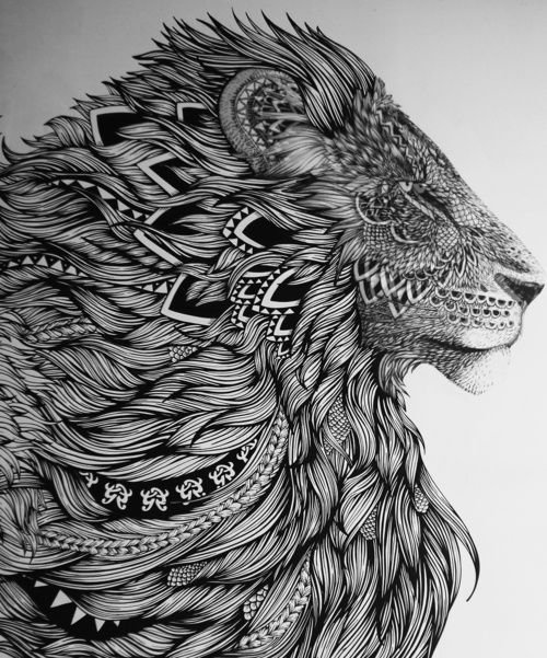 Patterned Lion 41 Inspiring And Mostly Black White