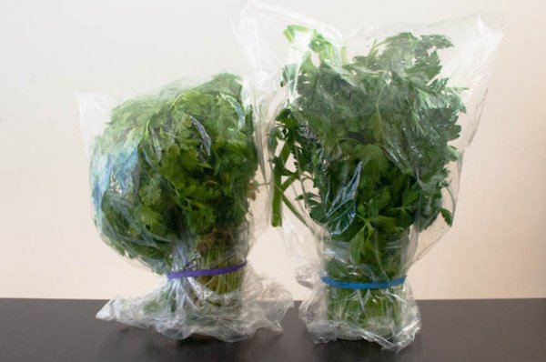 To Store Delicate Herbs, Place Them in Cups of Water, Cover Them with Plastic Wrap, Secure with a Rubber Band, and Refrigerate