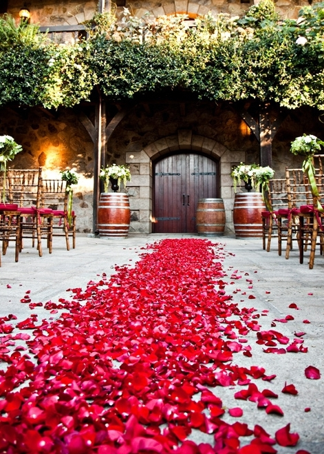 Scattered Flower Petals  Romantic Ideas For A Valentines Day