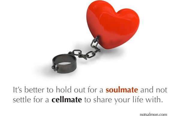 Soulmate over Cellmate