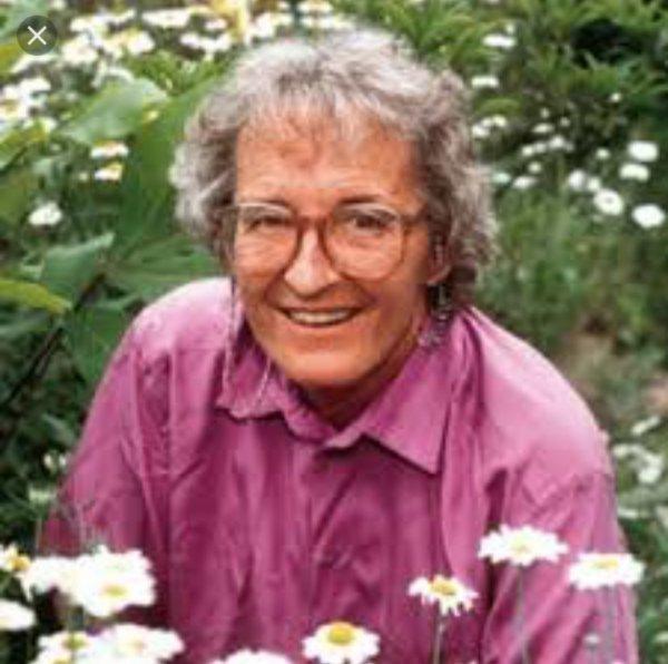 senior citizen, person, plant, elder, flower,