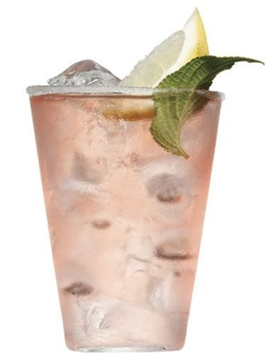 drink,alcoholic beverage,cocktail,distilled beverage,mint julep,