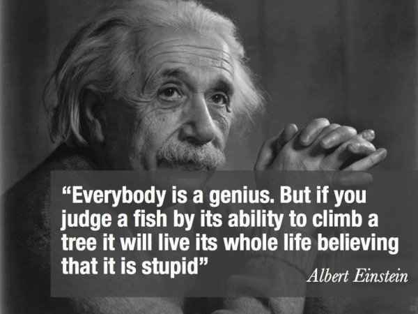 Most Inspirational Quotes Amusing 11 Most Inspiring Quotes From Albert Einstein To Help You Get Back On…
