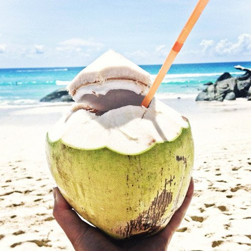 coconut, food, produce, fruit, Aug,