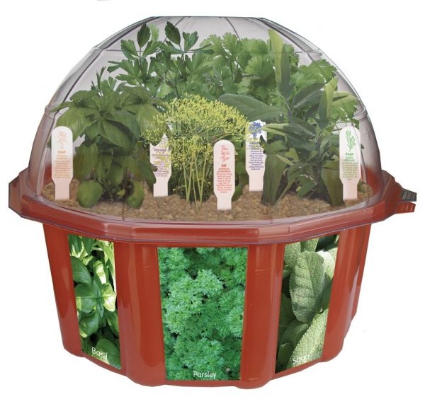 man made object, product, produce, cage, flowerpot,