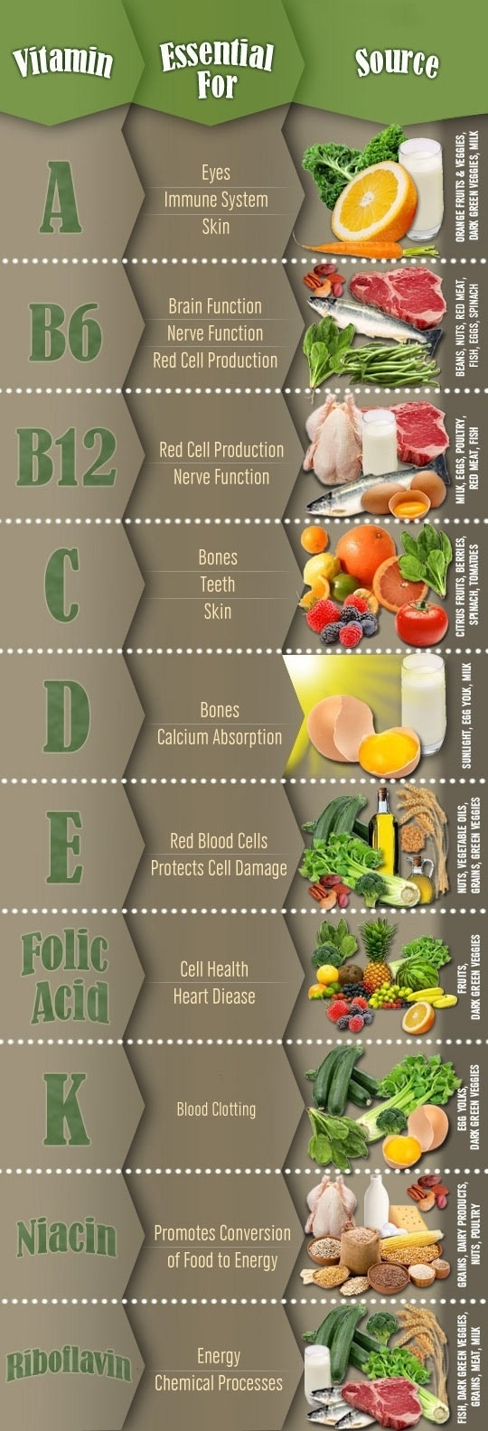 The Why and Where of Vitamins