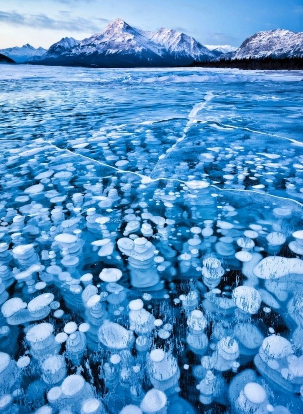 Abraham Lake's Frozen Air Bubbles