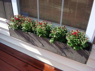 You Can Create A Diy Window Box Planter For Only 4