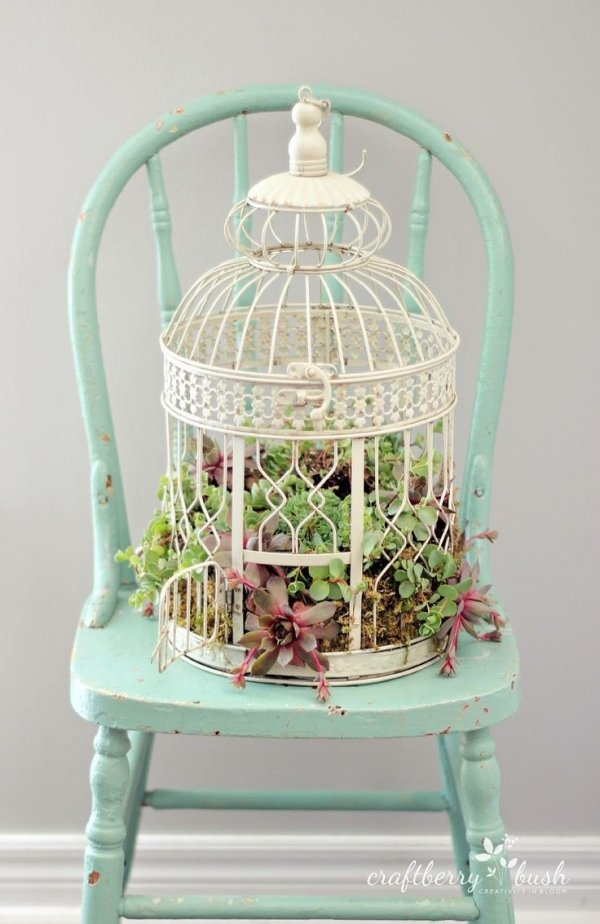 Bird Cage Garden 27 Alternative Uses for Bird Cages That You