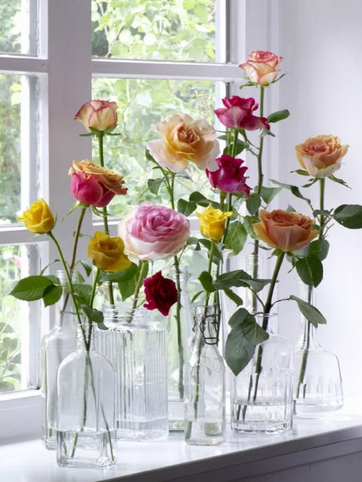 Tall Roses in Glass Vases