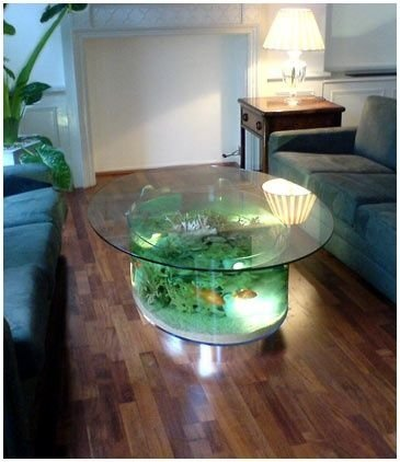 Coffee table fish tank 28 everyday items turned into for Fish aquarium coffee table