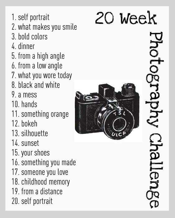 20 Week Photo Challenge