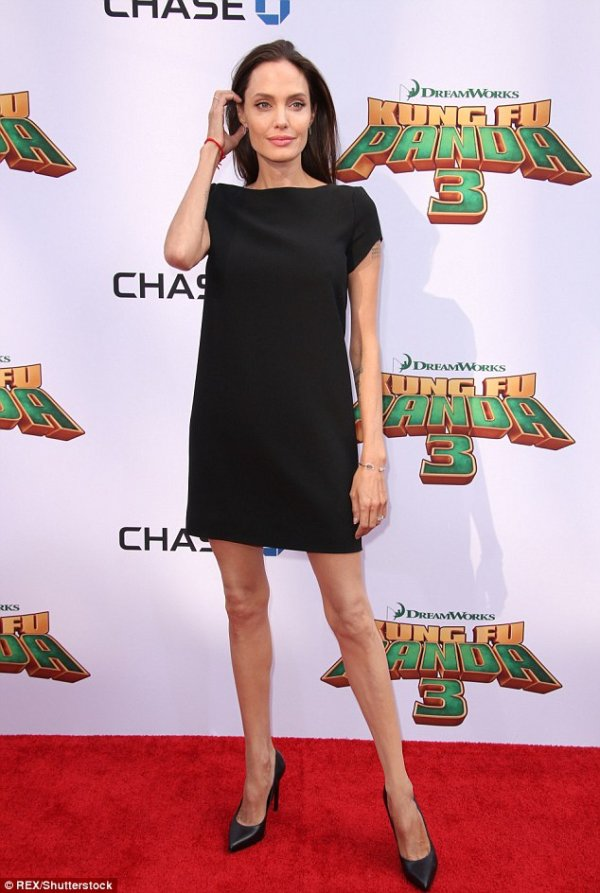 Chase, Kung Fu Panda 3, clothing, hair, little black dress,