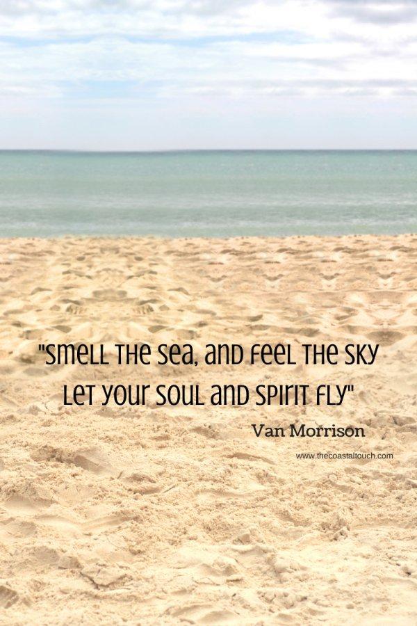 shore,sand,ocean,horizon,coast,