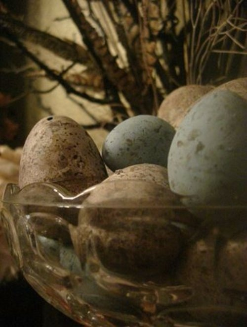 Primitive Eggs