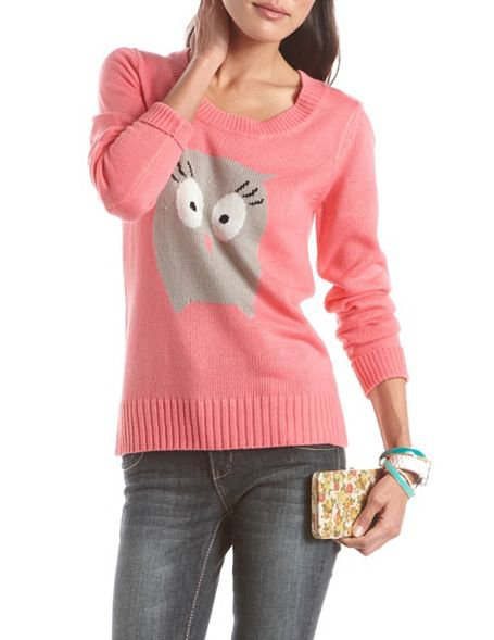 Soft Owl Pullover Sweater - 8 Adorable Animal Motif Sweaters ... …