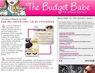 The Budget Babe by Dianna Baros