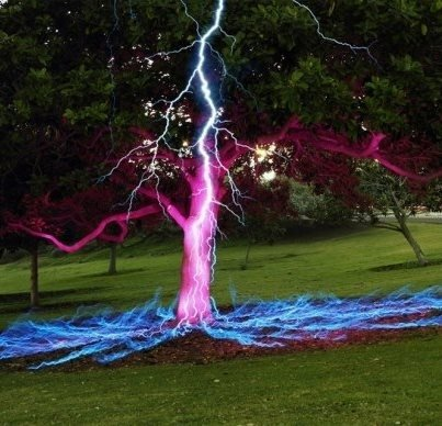 Lightning Bolt Hitting A Tree 56 Stunningly Awesome