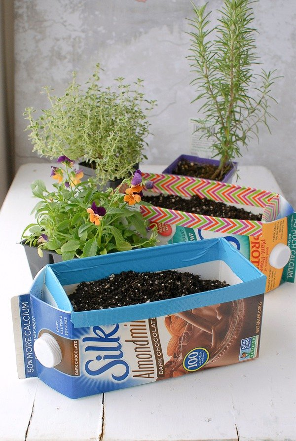 Plant Them in Milk Cartons