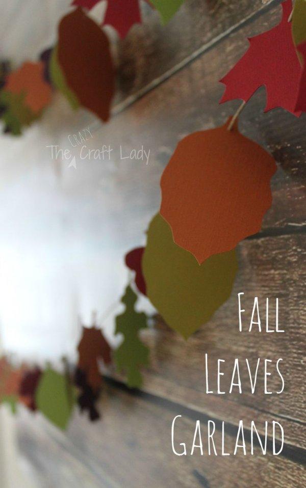 plant,leaf,season,flower,petal,