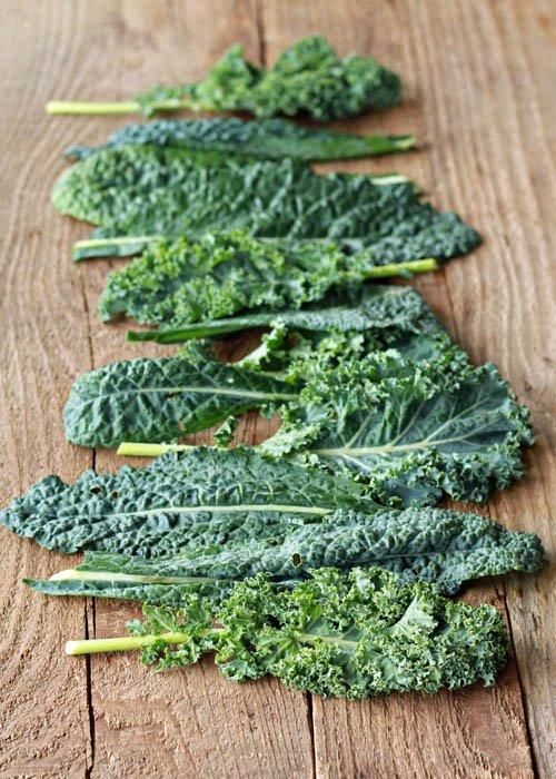Green, Leafy Kale