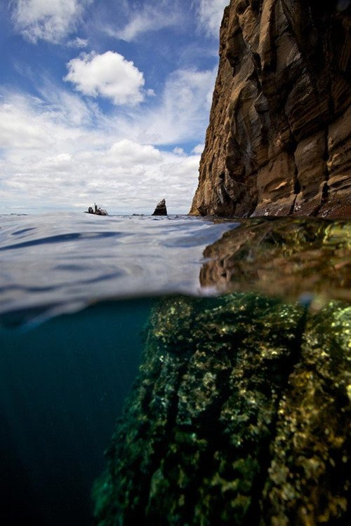 The Galapagos Islands Are a Great Choice