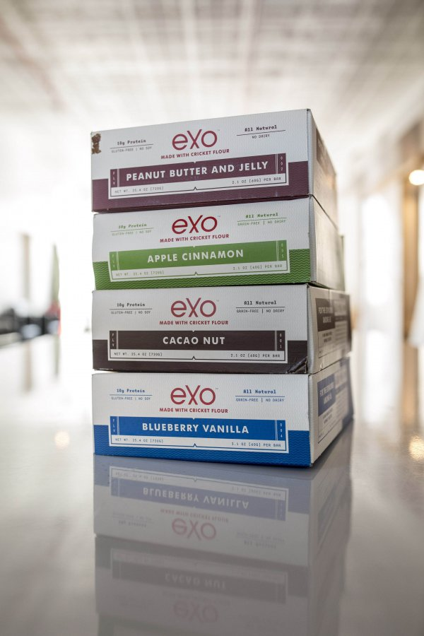 Protein Bars Packed with Insects