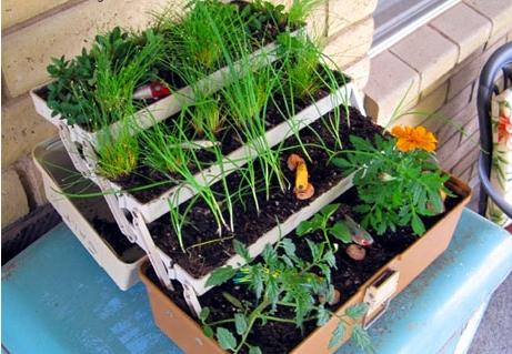 Tackle Box - 12 Amazingly Creative Planters ... Gardening