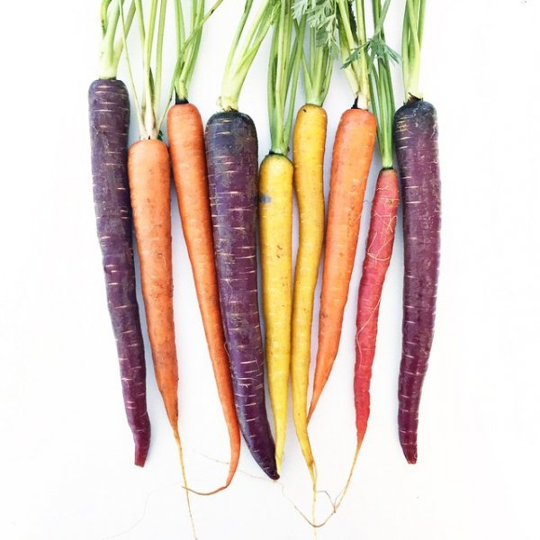 carrot, food, vegetable, produce,