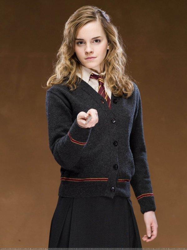 Harry Potter, Duh