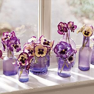 Pansies and Violas in Matching Bottles