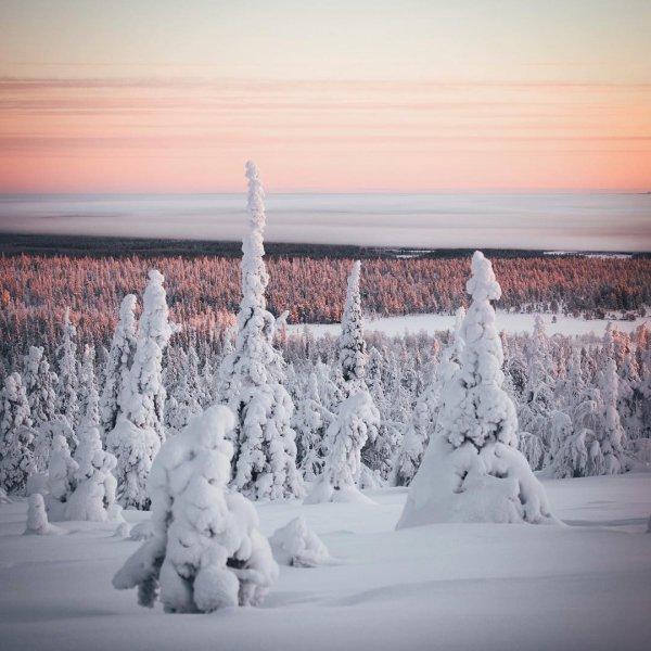 winter, snow, weather, freezing, season,