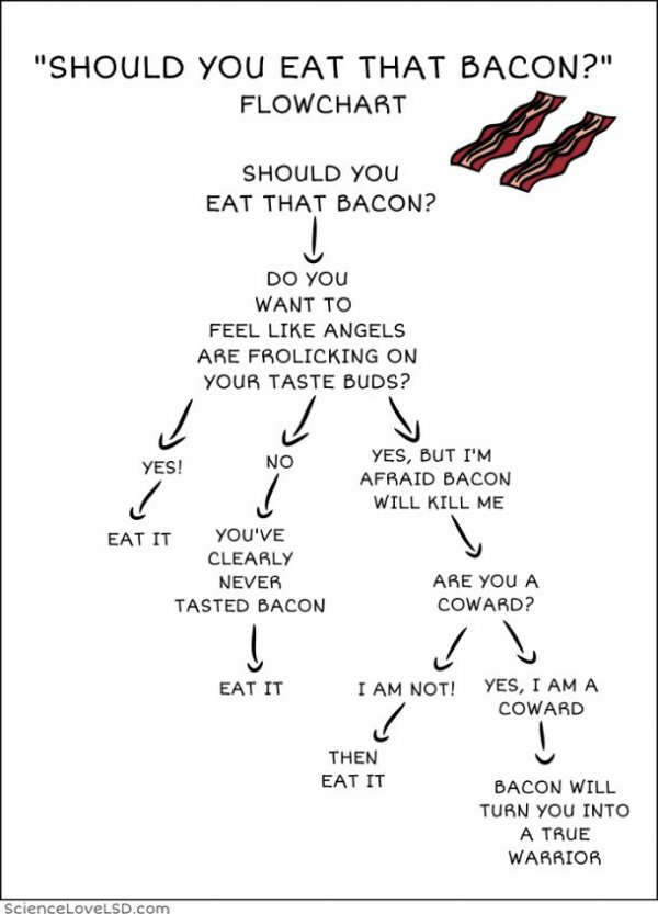 Should You Eat That Bacon? 1