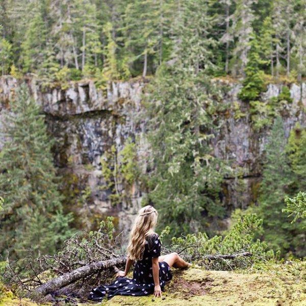 wilderness, tree, path,